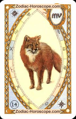 The fox, monthly Love and Health horoscope April Pisces