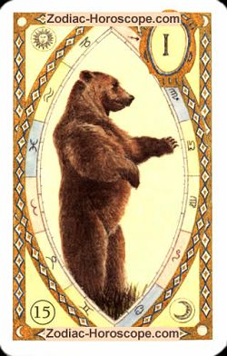 The bear, monthly Love and Health horoscope December Pisces