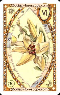 The lily astrological Lenormand Tarot