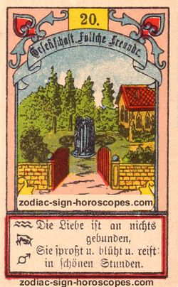 The garden, monthly Pisces horoscope January